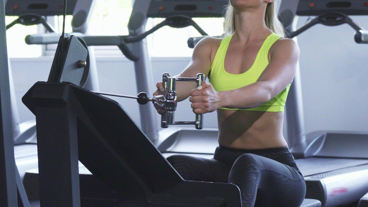seated cable row alternative